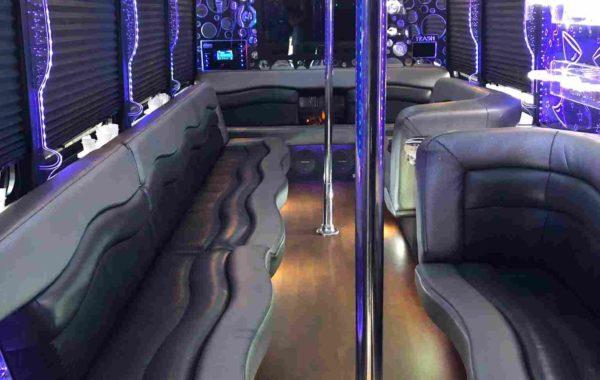 Limo Party Bus with 2 Poles for 28