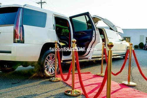 20 Passenger Cadillac Escalade with Jet Door New (2)